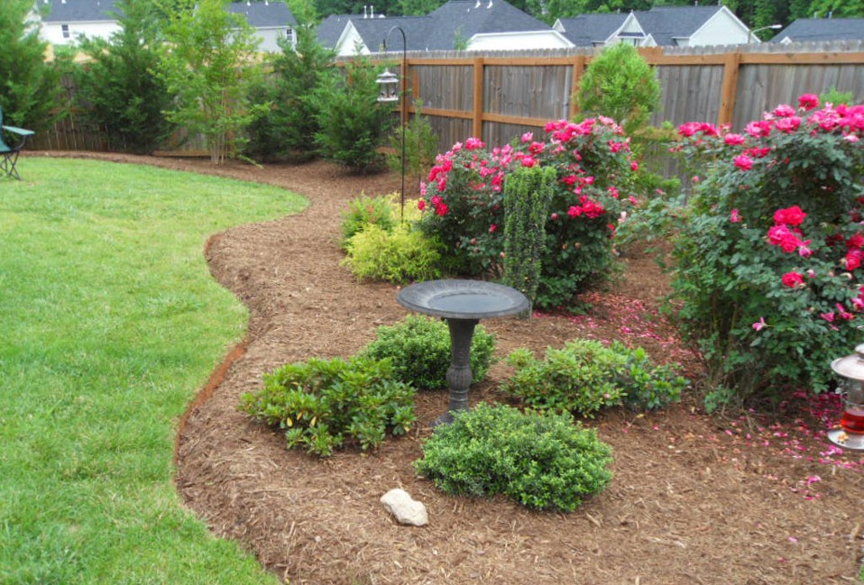 Rose garden with birdbath, bird feeder and evergreens with curving deep edges softening fence with natural area and privacy screen in background