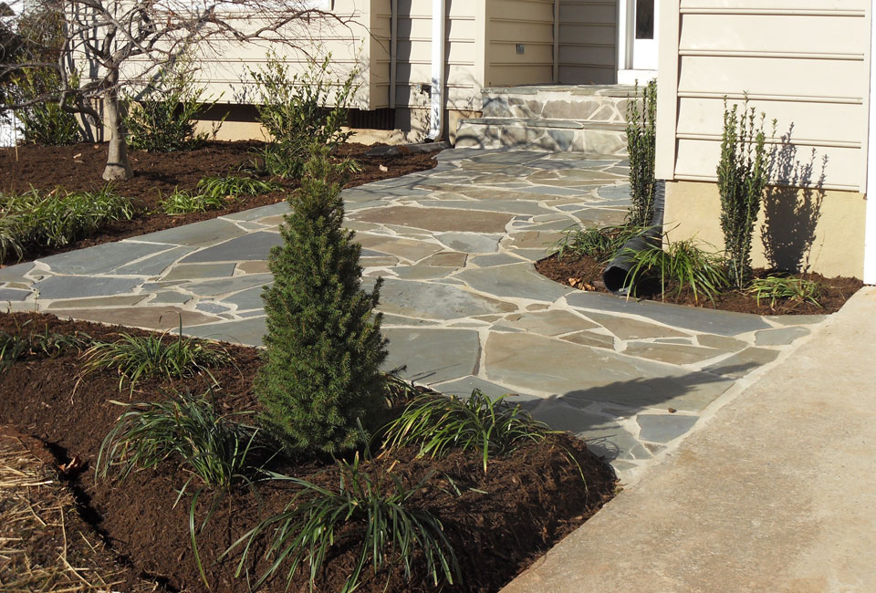 Mortared PA Bluestone Walkway, Mortared PA Bluestone Stairs & Mortared PA Bluestone Porch Leading from Cement Driveway to Custom Front Door w/ Shrubbery Bed Borders