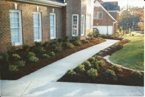 Planted Front Foundation & Walkway Border Beds with Aged Hardwood Mulch & Small Stone Accent of Deep Edged Curvilinear Borders