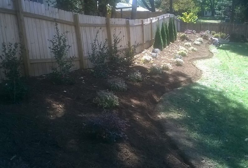 Deep Edged Backyard Natural Area Buffering Fence & Future Privacy Screen Mulched w/ Aged Hardwood